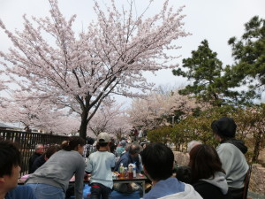 13日御経塚町内会の花見会