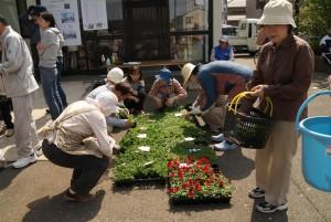 花かご苗植え替え講習会