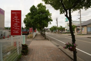 イオン御経塚西側の歩道の街路樹にも花かご