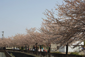 馬場川緑道を歩く人たち