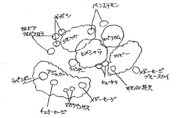野々市駅北口花壇 植栽図 1