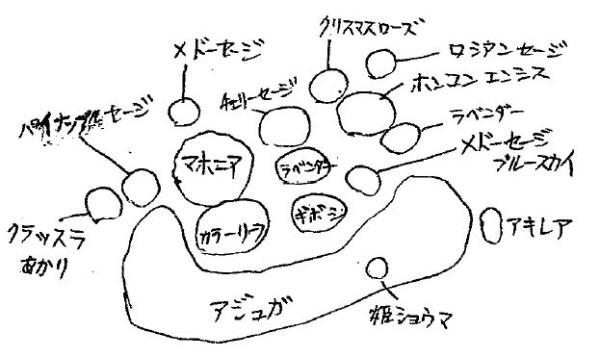 野々市駅北口花壇 植栽図 2