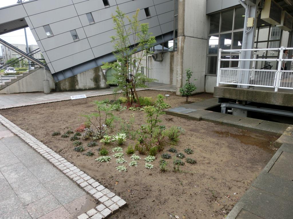 野々市駅北口花壇