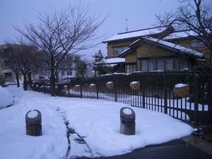雪の中の花かご(馬場川緑道)